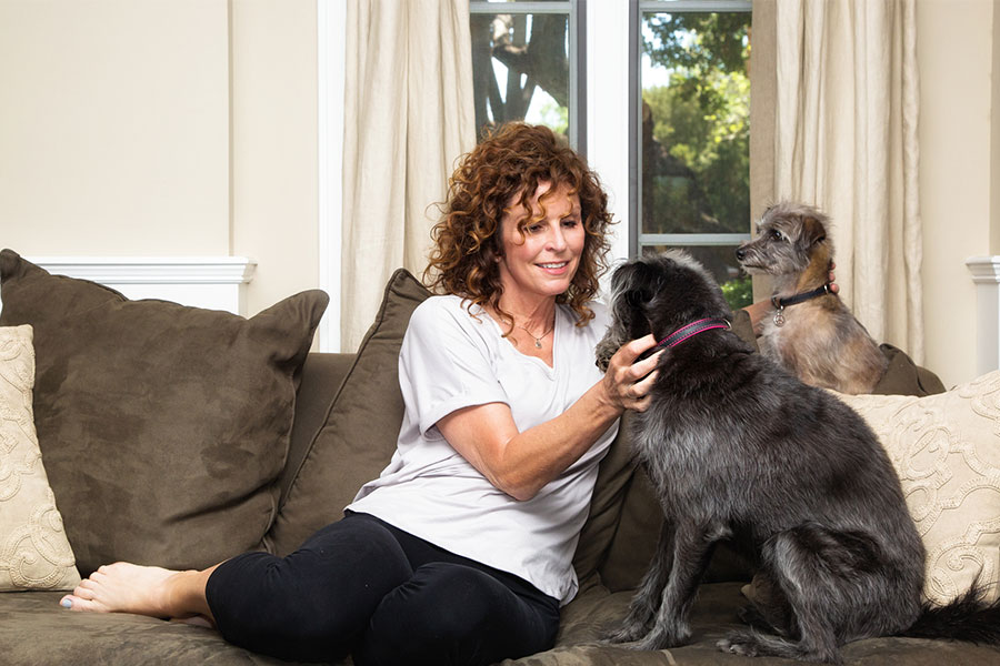 The Benefits of Hiring a Professional Pet Sitter